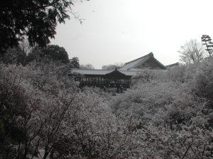Toufukuji 001
